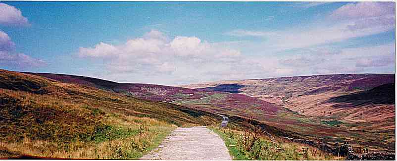 Croasdale Fell covered with heather
